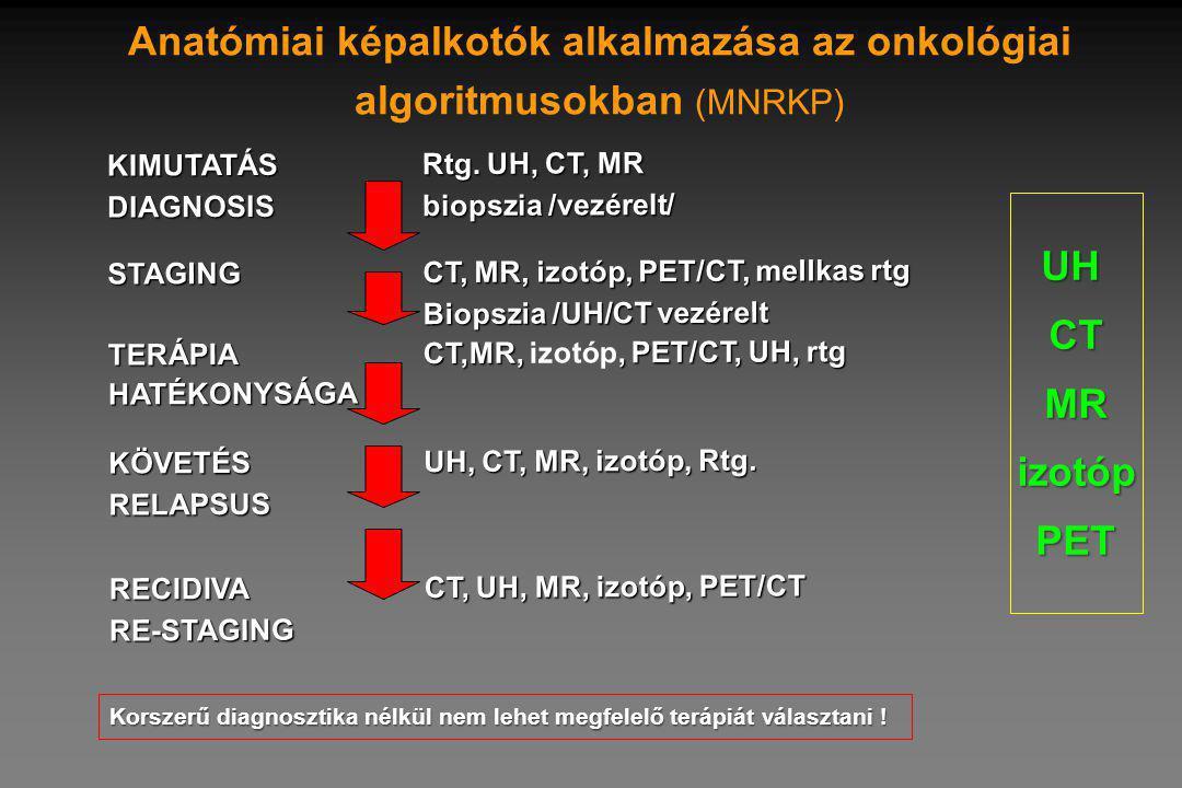 Anatómiai képalkotók alkalmazása az onkológiai algoritmusokban (MNRKP)