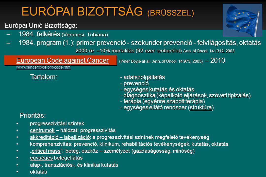 EURÓPAI BIZOTTSÁG (BRÜSSZEL)