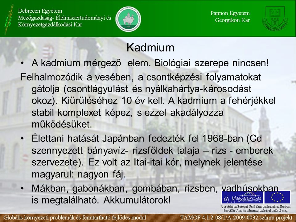 Kadmium A kadmium mérgező elem. Biológiai szerepe nincsen!