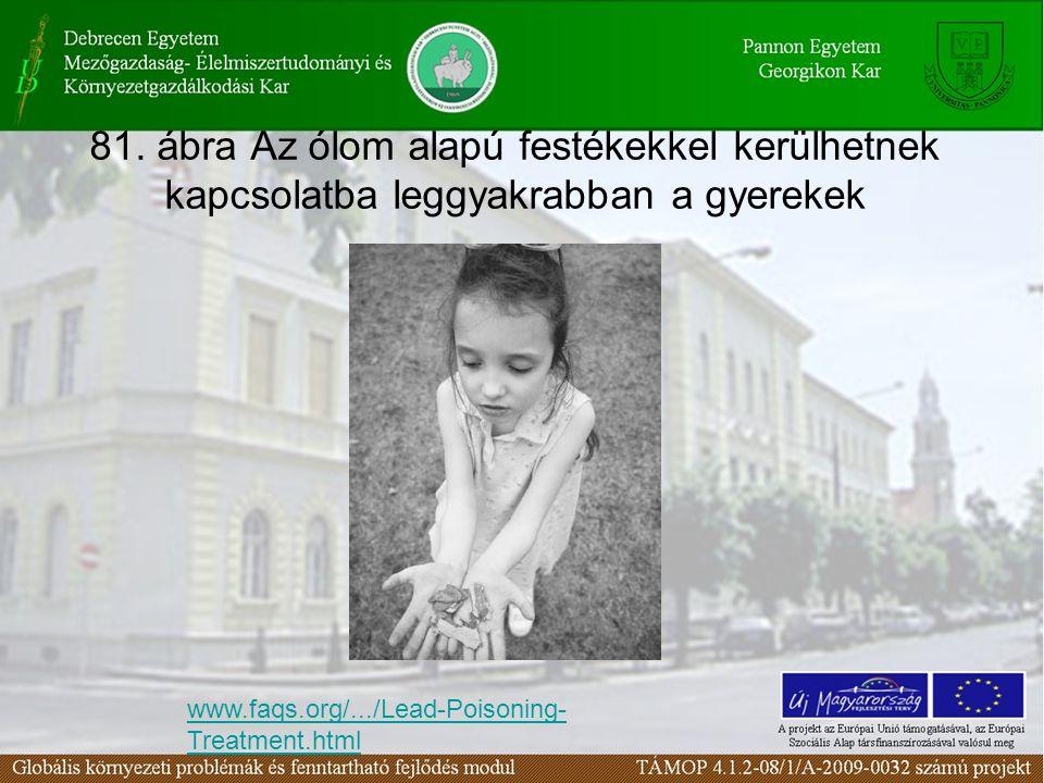 81. ábra Az ólom alapú festékekkel kerülhetnek kapcsolatba leggyakrabban a gyerekek