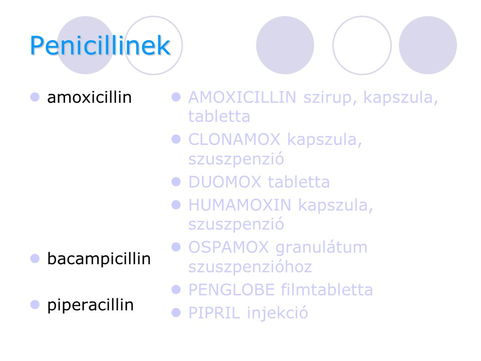 Penicillinek amoxicillin bacampicillin piperacillin