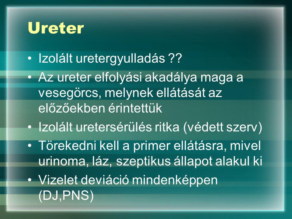 Ureter Izolált uretergyulladás