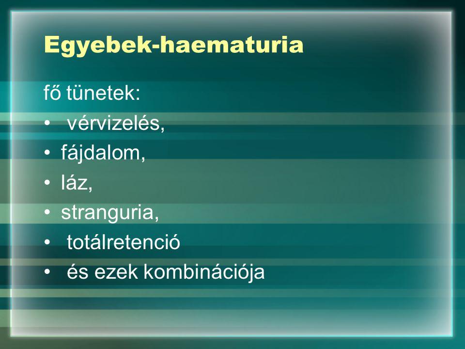 Egyebek-haematuria fő tünetek: vérvizelés, fájdalom, láz, stranguria,