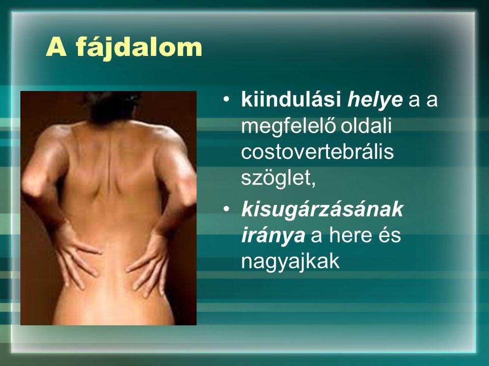 A fájdalom kiindulási helye a a megfelelő oldali costovertebrális szöglet, kisugárzásának iránya a here és nagyajkak.