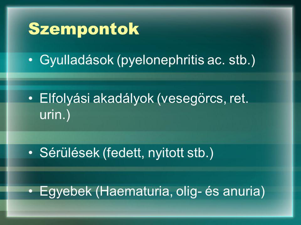Szempontok Gyulladások (pyelonephritis ac. stb.)