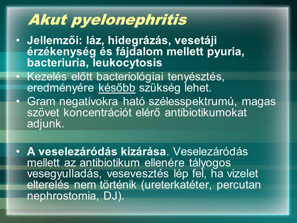 Akut pyelonephritis Jellemzői: láz, hidegrázás, vesetáji érzékenység és fájdalom mellett pyuria, bacteriuria, leukocytosis.