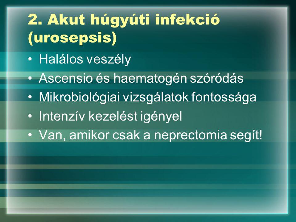 2. Akut húgyúti infekció (urosepsis)
