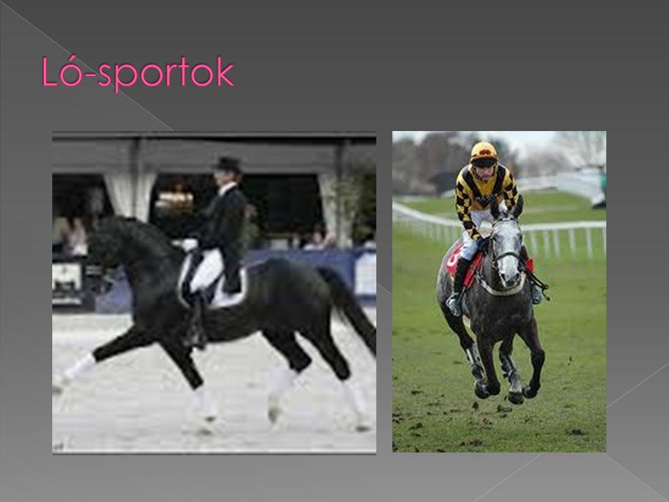 Ló-sportok