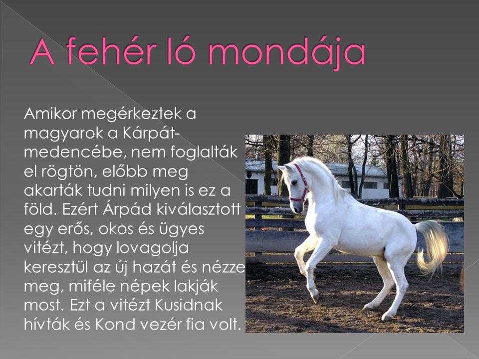 A fehér ló mondája