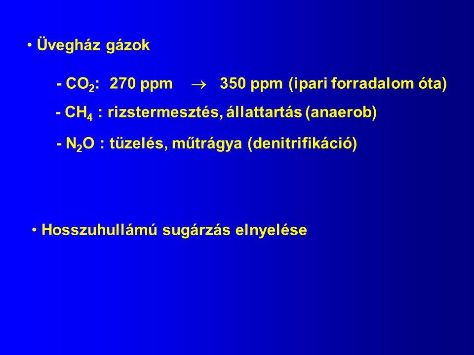 Üvegház gázok - CO2: 270 ppm  350 ppm (ipari forradalom óta) - CH4 : rizstermesztés, állattartás (anaerob)