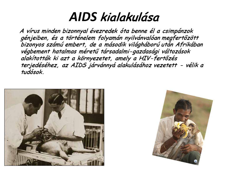 AIDS kialakulása