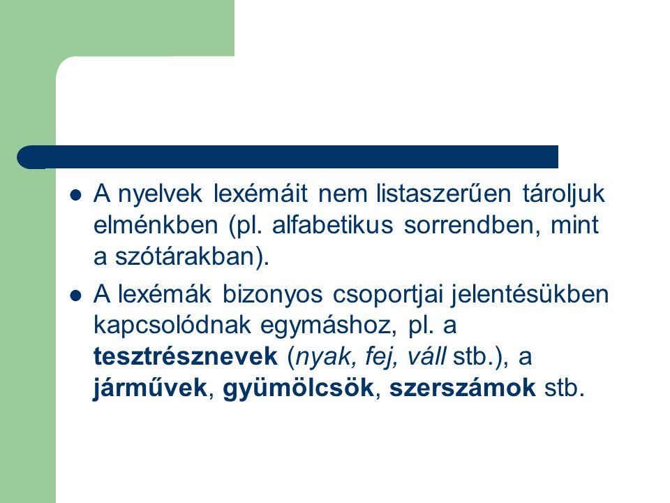 A nyelvek lexémáit nem listaszerűen tároljuk elménkben (pl