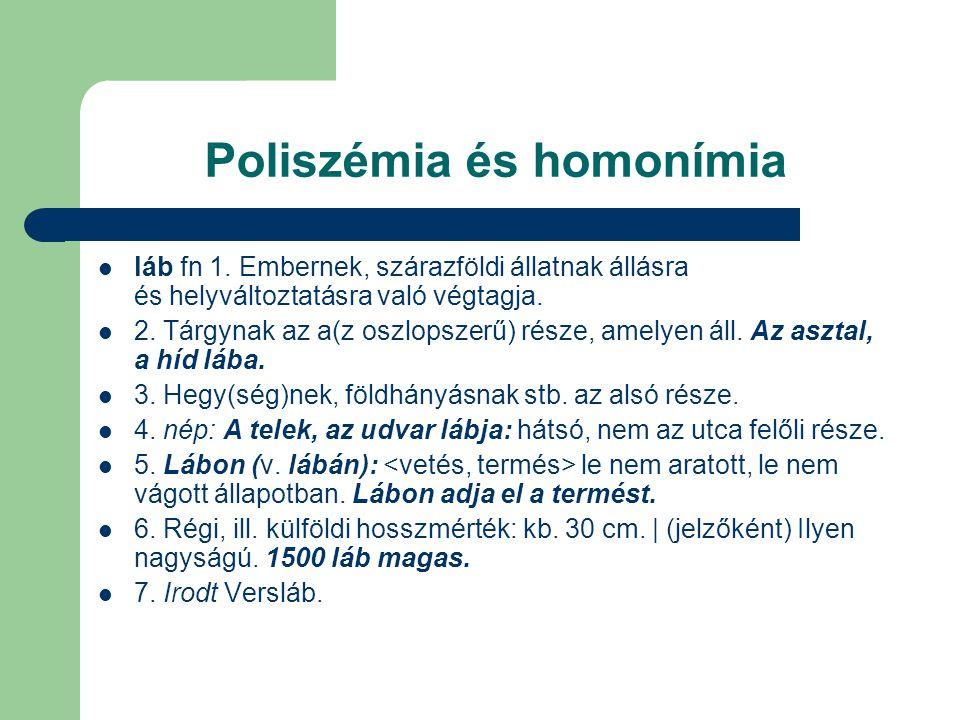 Poliszémia és homonímia