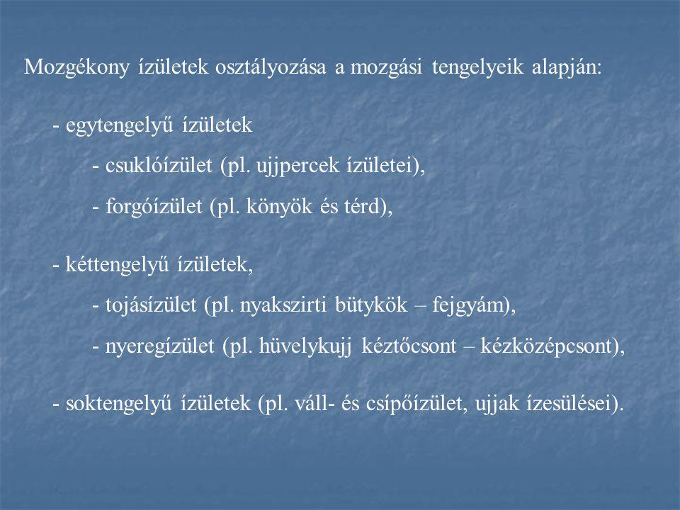 Mozgékony ízületek osztályozása a mozgási tengelyeik alapján:
