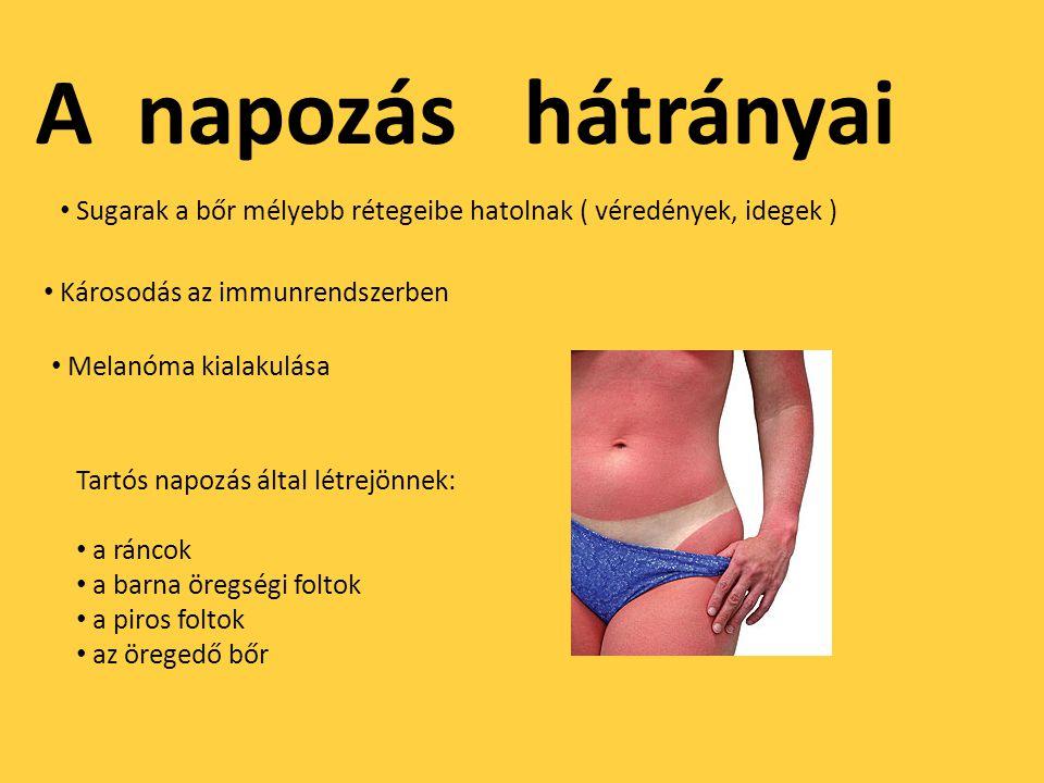 A napozás hátrányai Sugarak a bőr mélyebb rétegeibe hatolnak ( véredények, idegek ) Károsodás az immunrendszerben.