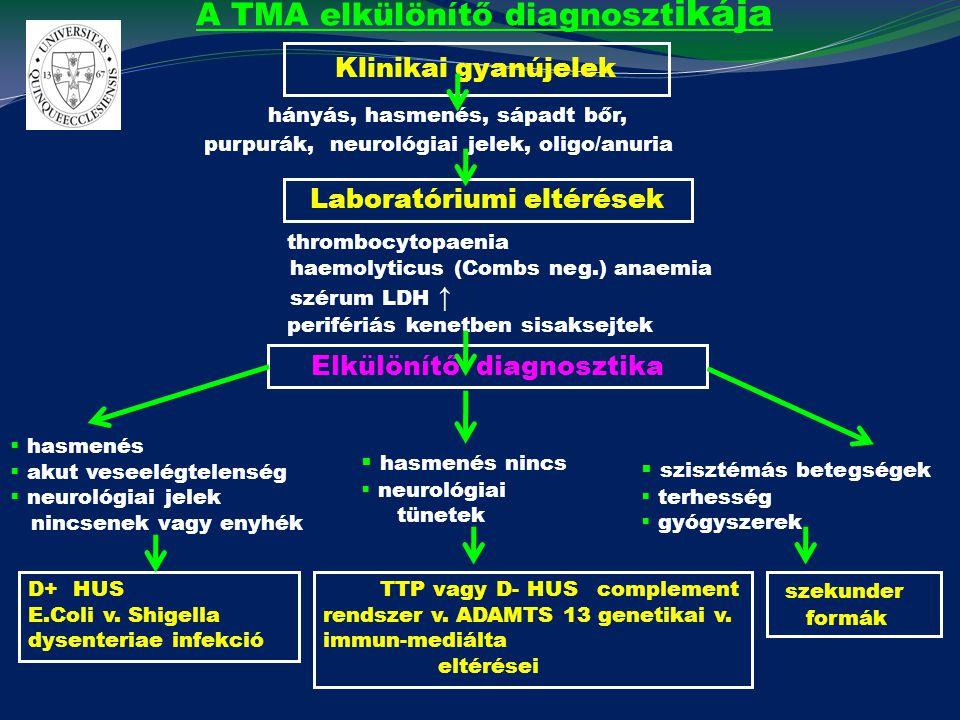 A TMA elkülönítő diagnosztikája