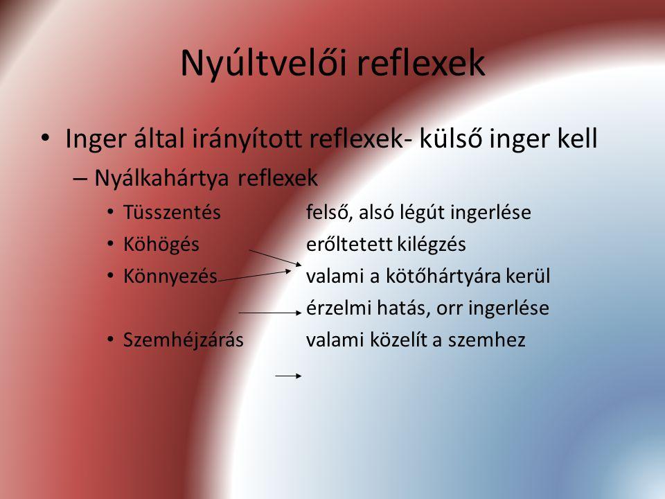 Nyúltvelői reflexek Inger által irányított reflexek- külső inger kell