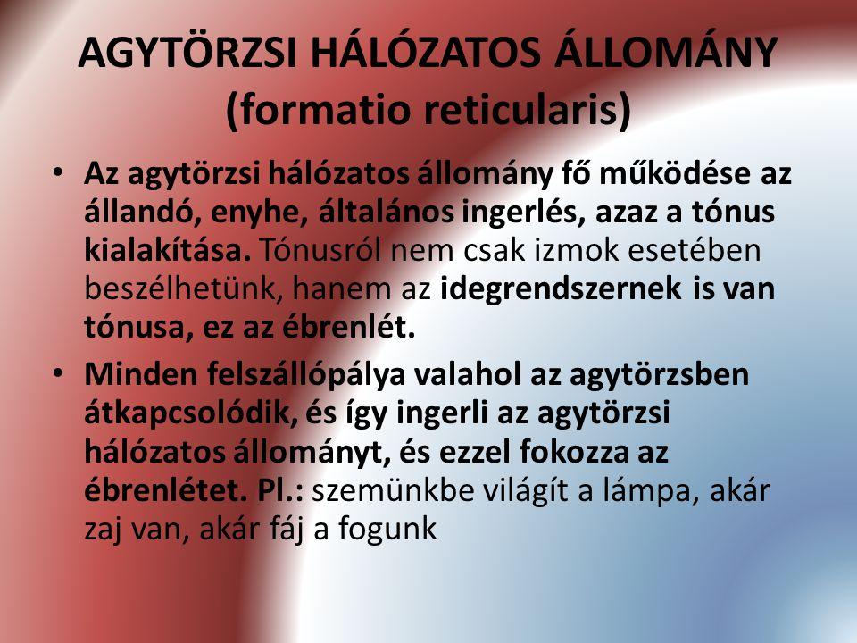 AGYTÖRZSI HÁLÓZATOS ÁLLOMÁNY (formatio reticularis)