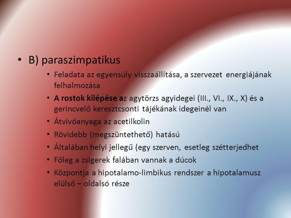 B) paraszimpatikus Feladata az egyensúly visszaállítása, a szervezet energiájának felhalmozása.