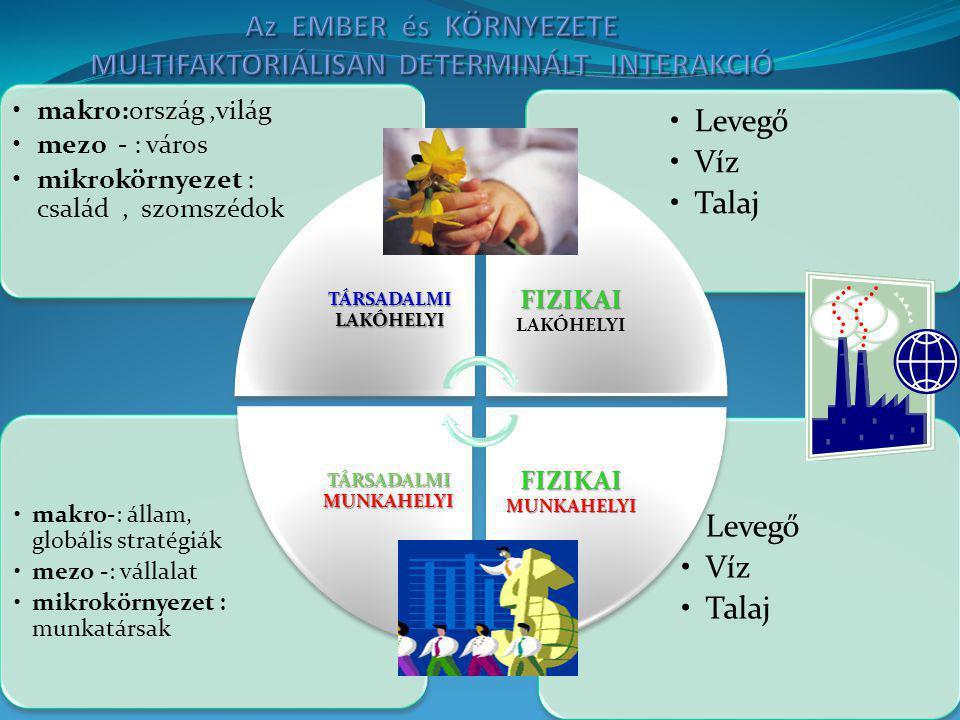 Az EMBER és KÖRNYEZETE MULTIFAKTORIÁLISAN DETERMINÁLT INTERAKCIÓ