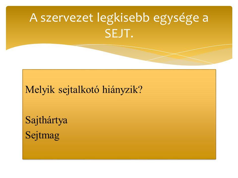 A szervezet legkisebb egysége a SEJT.