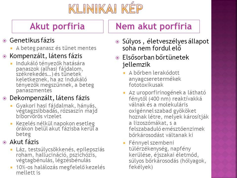 kLinikai kép Akut porfiria Nem akut porfiria Genetikus fázis