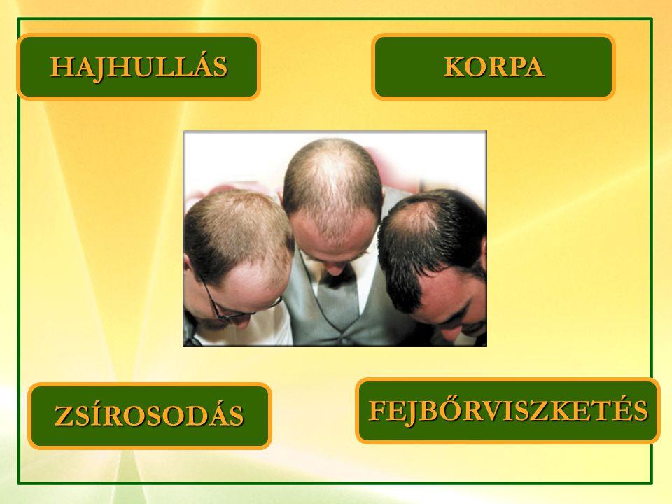 HAJHULLÁS KORPA FEJBŐRVISZKETÉS ZSÍROSODÁS