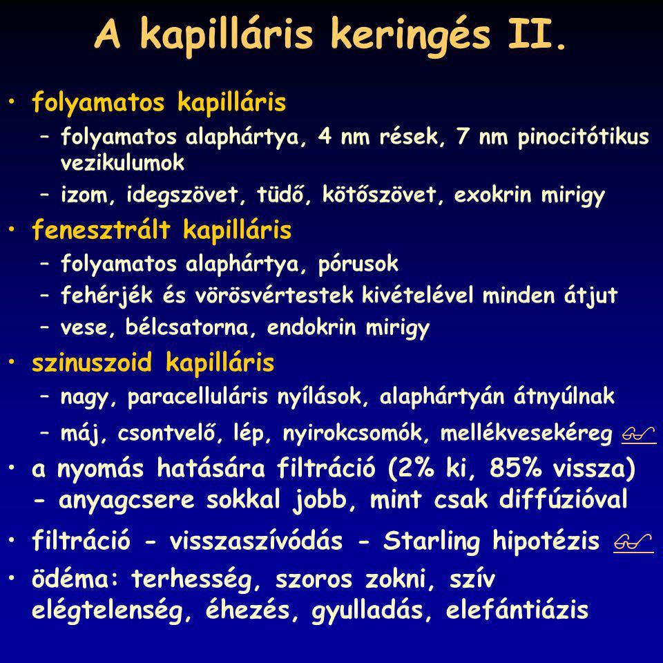 A kapilláris keringés II.