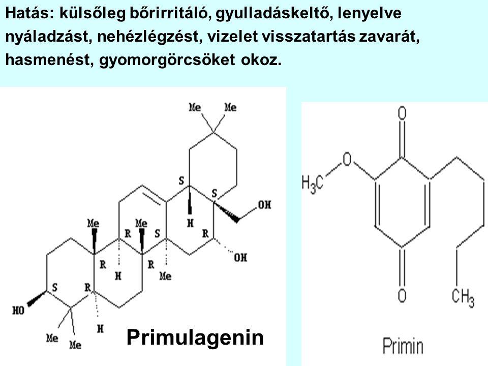 Primulagenin Hatás: külsőleg bőrirritáló, gyulladáskeltő, lenyelve