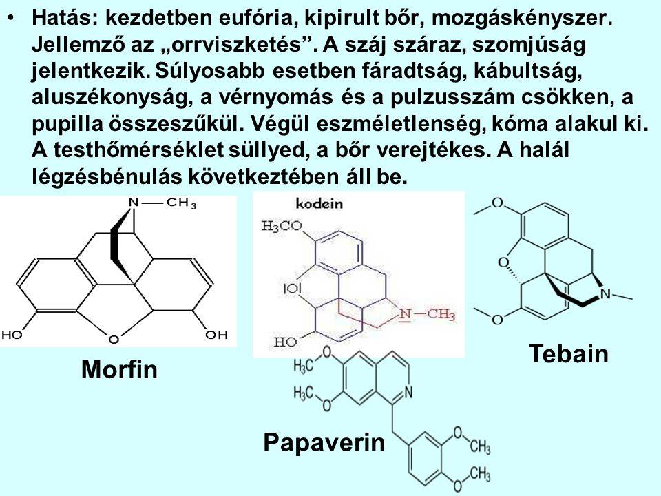 Tebain Morfin Papaverin
