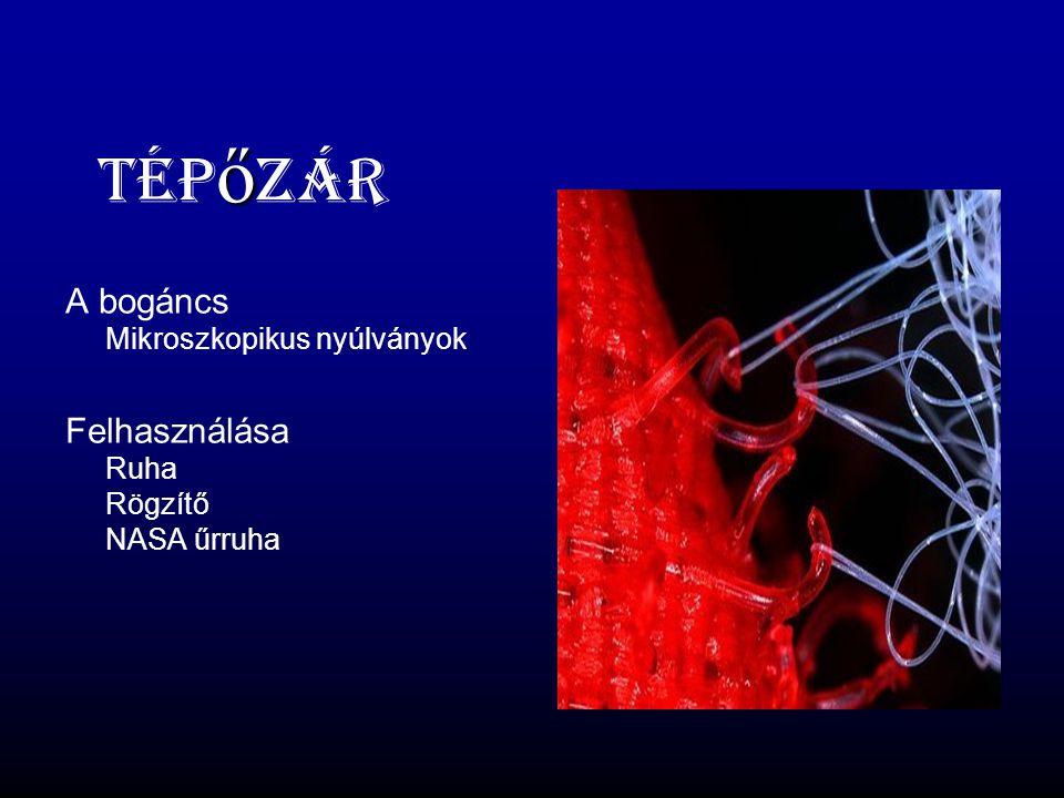Tépőzár A bogáncs Mikroszkopikus nyúlványok