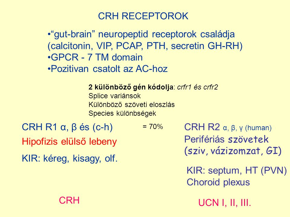 gut-brain neuropeptid receptorok családja