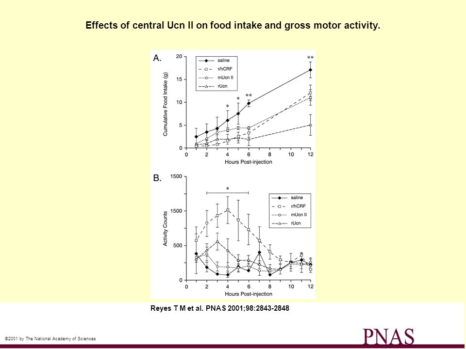 Effects of central Ucn II on food intake and gross motor activity.