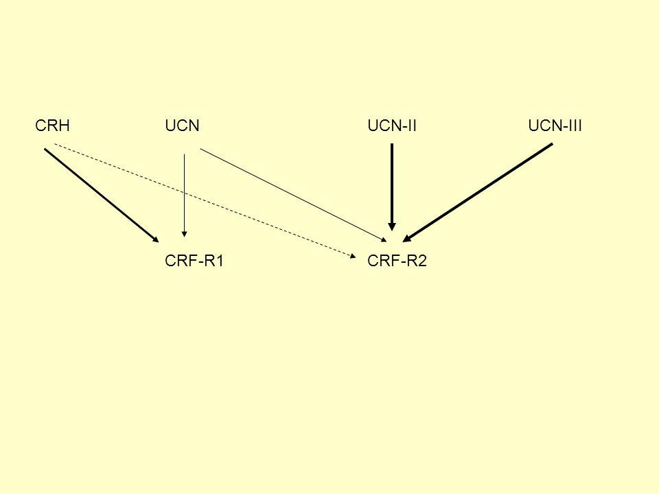 CRH UCN UCN-II UCN-III CRF-R1 CRF-R2