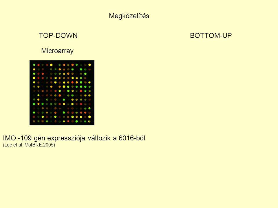 IMO -109 gén expressziója változik a 6016-ból
