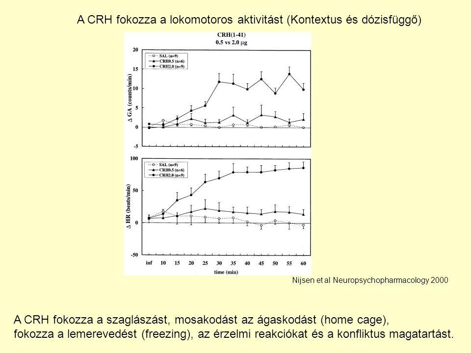 A CRH fokozza a lokomotoros aktivitást (Kontextus és dózisfüggő)