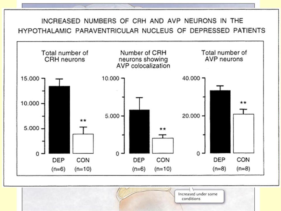 5. Stresszel-kapcsolatos neuropeptidek- neuropszichiátriai betegségek