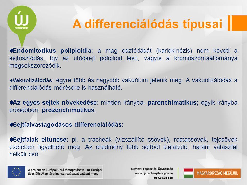 A differenciálódás típusai