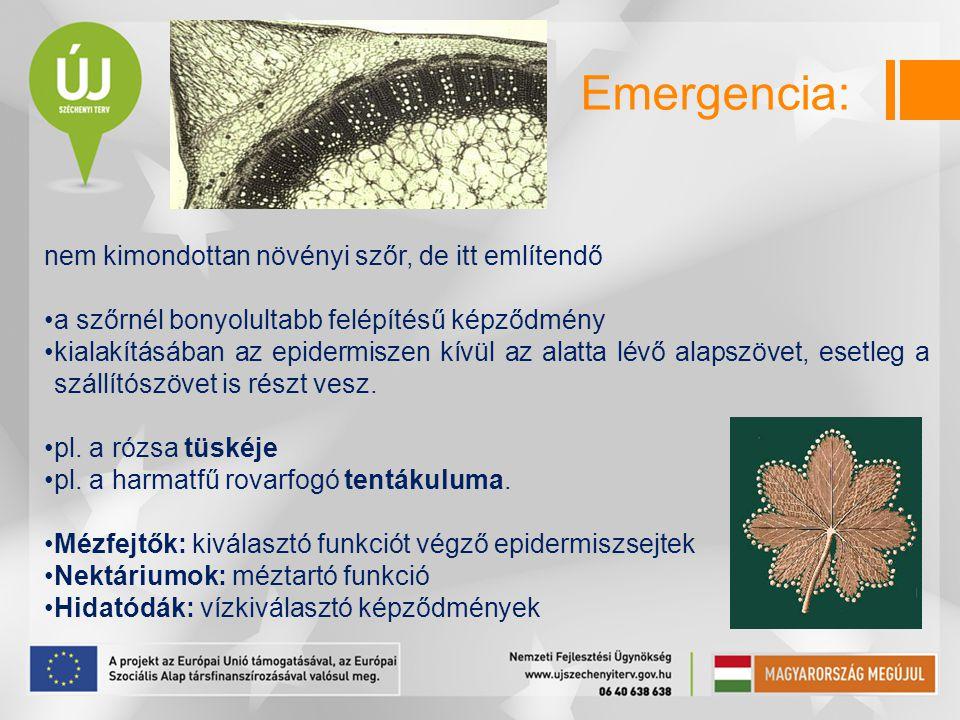 Emergencia: nem kimondottan növényi szőr, de itt említendő