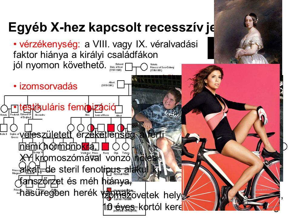 Egyéb X-hez kapcsolt recesszív jellegek