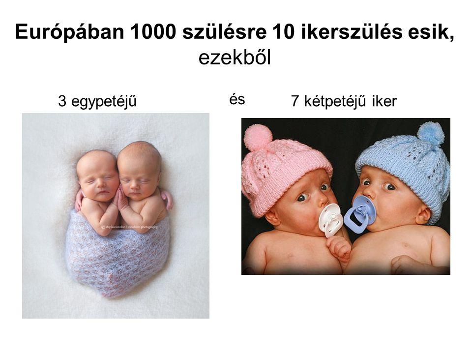 Európában 1000 szülésre 10 ikerszülés esik, ezekből