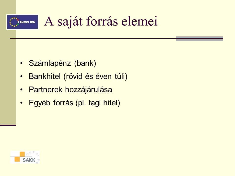 A saját forrás elemei • Számlapénz (bank)