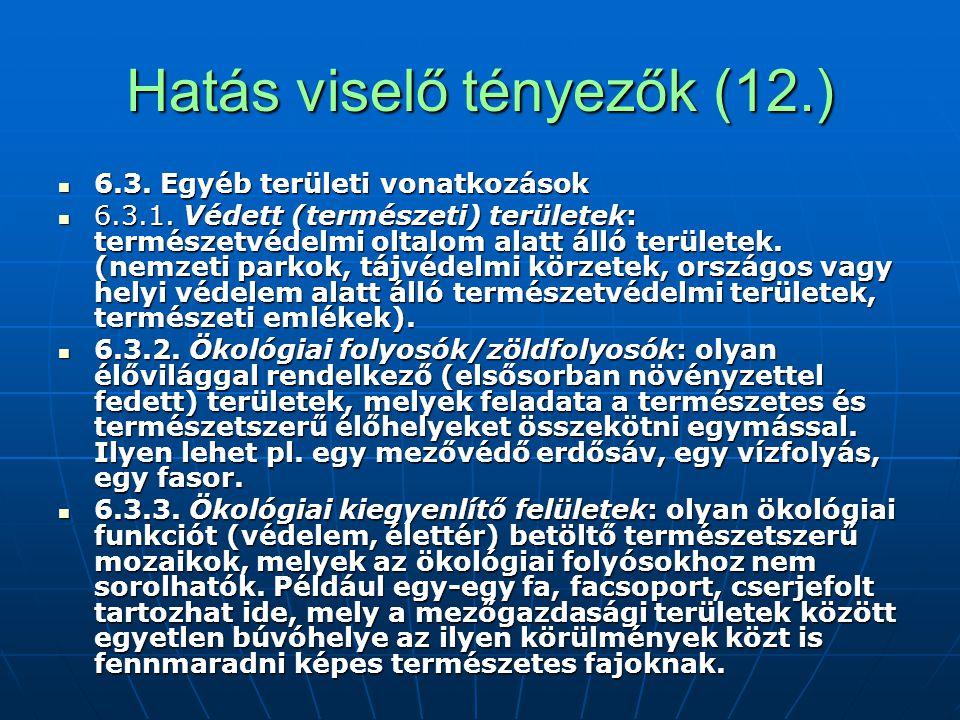 Hatás viselő tényezők (12.)