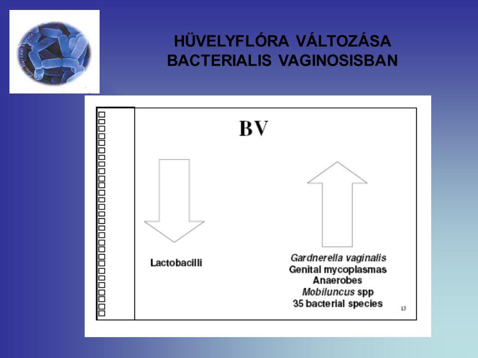 HÜVELYFLÓRA VÁLTOZÁSA BACTERIALIS VAGINOSISBAN