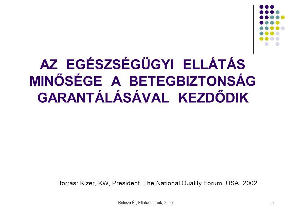 Belicza É., Ellátási hibák, 2005