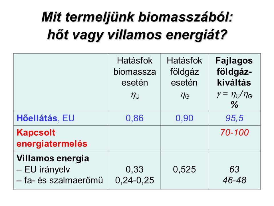 Mit termeljünk biomasszából: hőt vagy villamos energiát