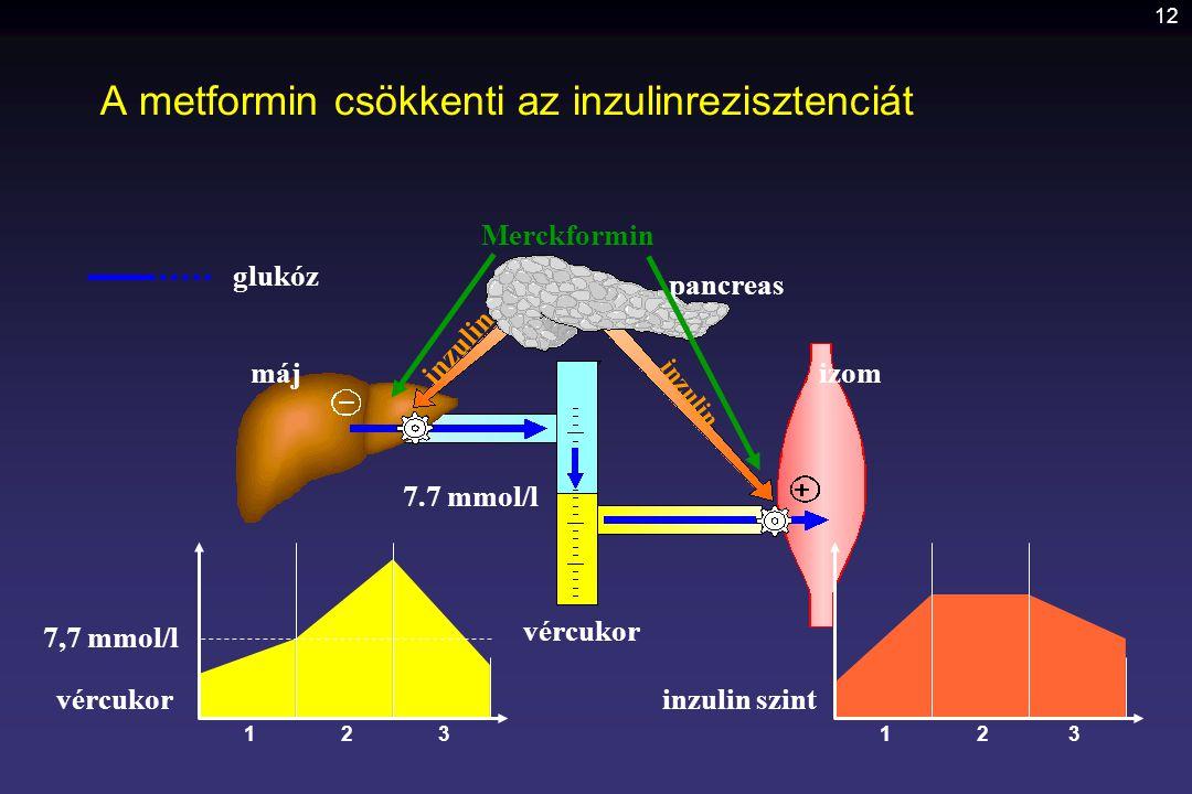 A metformin csökkenti az inzulinrezisztenciát