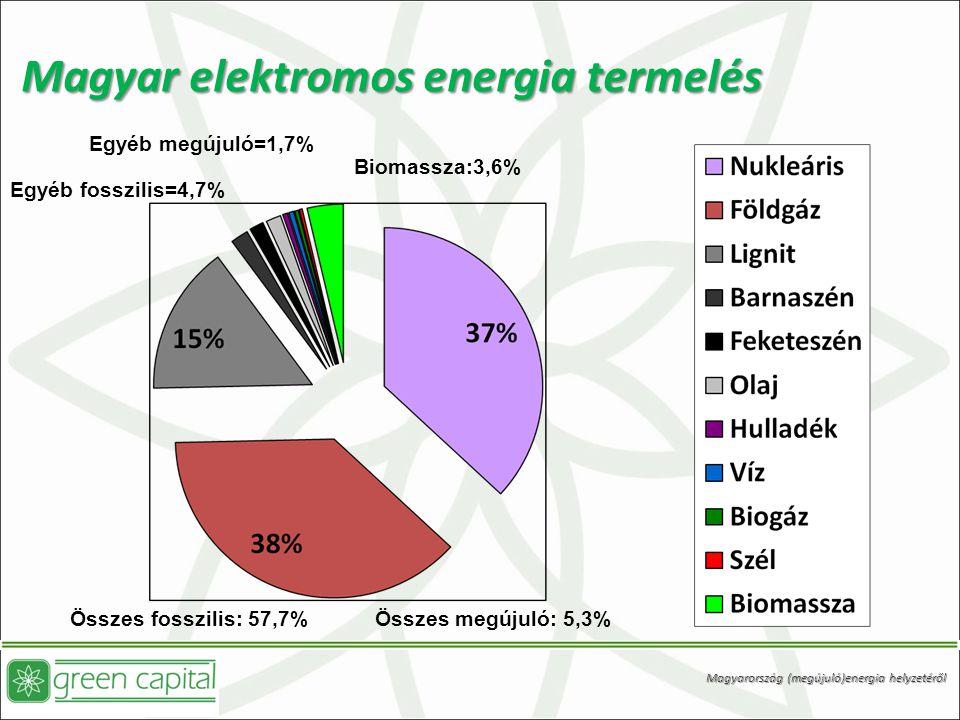 Magyar elektromos energia termelés