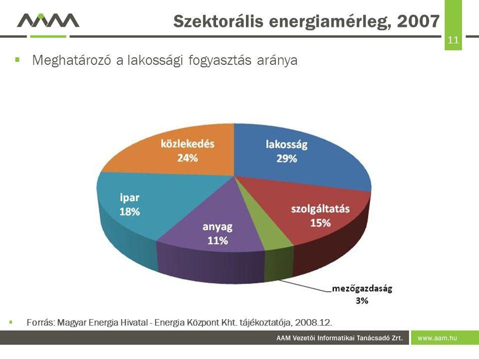 Szektorális energiamérleg, 2007