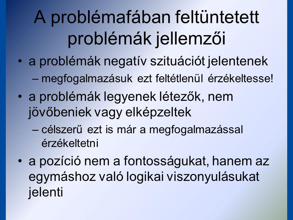 A problémafában feltüntetett problémák jellemzői